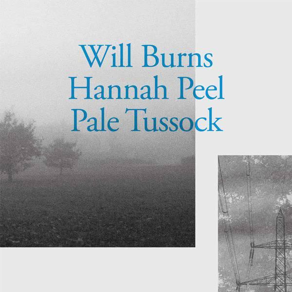 Pale Tussock by Will Burns & Hannah Peel