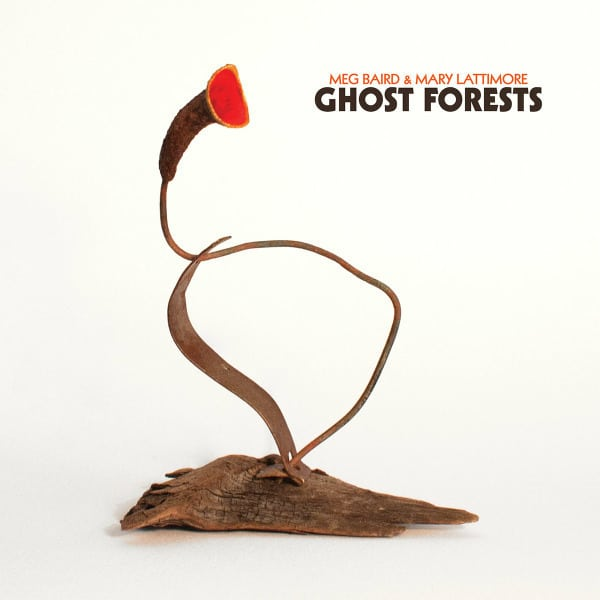 Ghost Forests by Meg Baird & Mary Lattimore