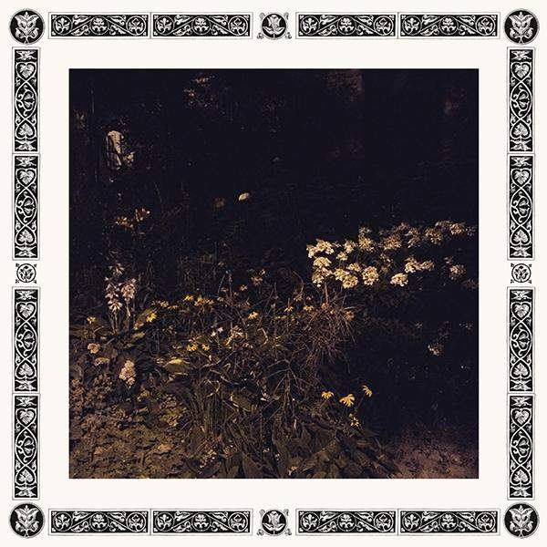 Pale Bloom by Sarah Davachi