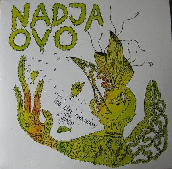 The Life And Death Of A Wasp by Nadja/ Ovo