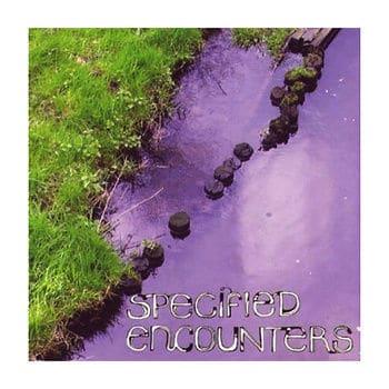 Specified Encounters by Iris Garrelfs