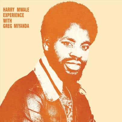 Harry Mwale Experience with Greh Miyanda by Harry Mwale Experience