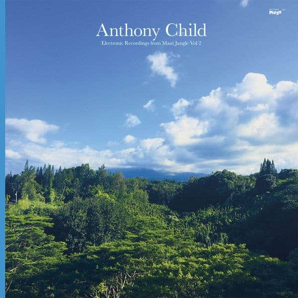 Electronic Recordings from Maui Jungle, Vol. 2 by Anthony Child