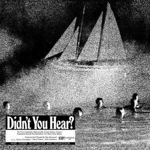 'Didn't You Hear?' by Mort Garson