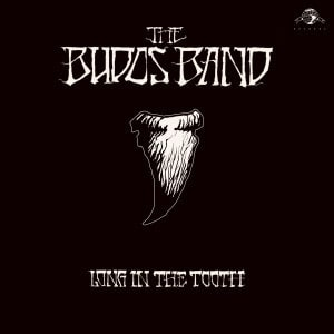 'Long In The Tooth' by The Budos Band