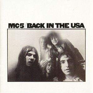 'Back In The USA' by MC5