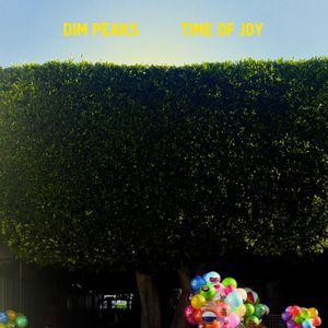 'Time of Joy' by Dim Peaks