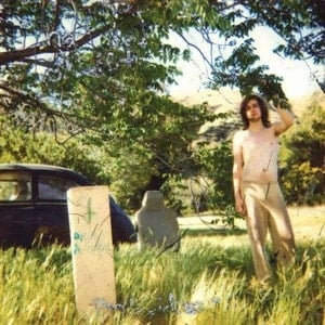 'The Doldrums' by Ariel Pink's Haunted Graffiti