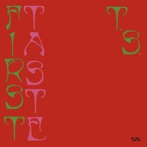 'First Taste' by Ty Segall