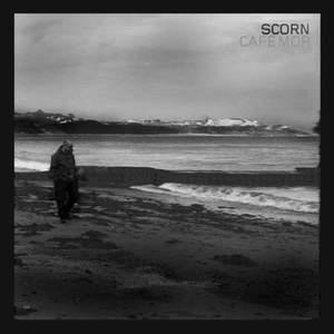 'Cafe Mor' by Scorn