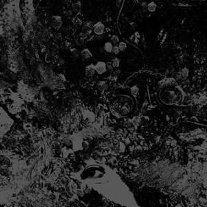 'Split' by Primitive Man / Unearthly Trance