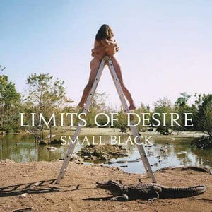 'Limits Of Desire' by Small Black