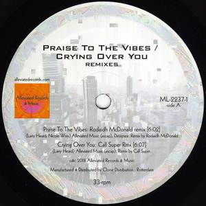 'Praise to the Vibes / Crying Over You Remixes' by Mr. Fingers