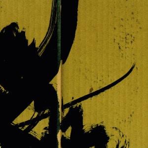 'Samurai Math Beats' by Bogdan Raczynski