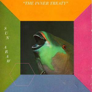 'The Inner Treaty' by Sun Araw