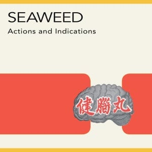 'Actions and Indications' by Seaweed