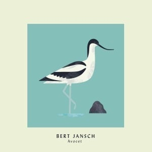'Avocet (Expanded Anniversary Edition)' by Bert Jansch