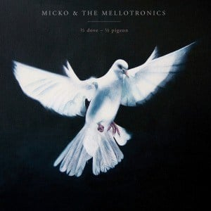 '½ Dove - ½ Pigeon' by Micko & The Mellotronics