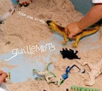 From The Cliffs by Guillemots
