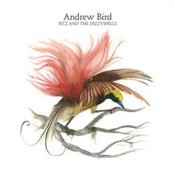 Fitz And The Dizzyspells EP by Andrew Bird