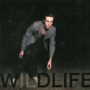 'Wildlife' by The Icarus Line
