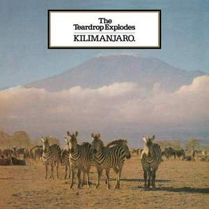 'Kilimanjaro' by The Teardrop Explodes