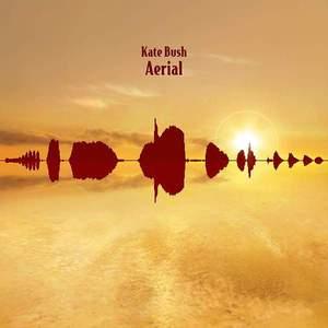 'Aerial' by Kate Bush