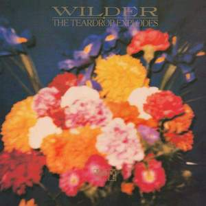 'Wilder' by The Teardrop Explodes