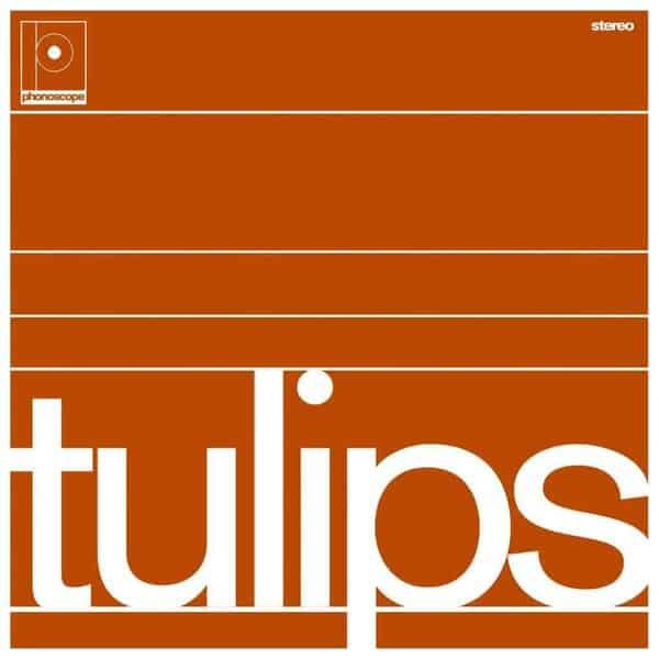 'Tulips' by Maston