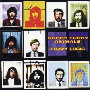 'Fuzzy Logic' by Super Furry Animals