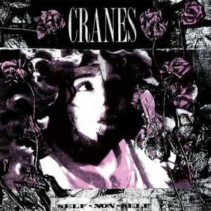 'Self Non-Self' by Cranes