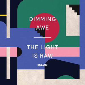 'Dimming Awe, The Light is Raw' by Botany