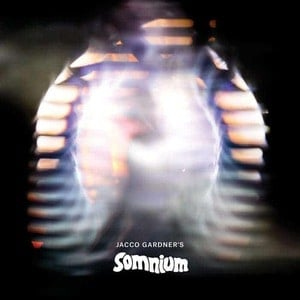 'Somnium' by Jacco Gardner