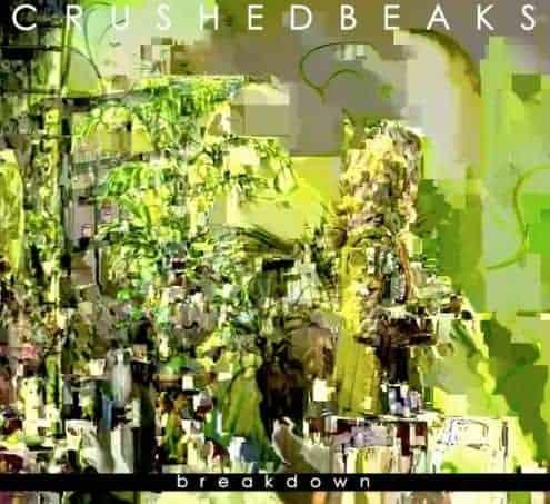 'Breakdown' by Crushed Beaks