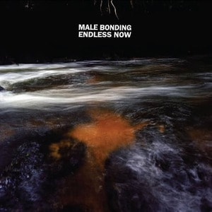 'Endless Now' by Male Bonding