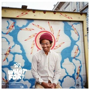 'What For?' by Toro Y Moi