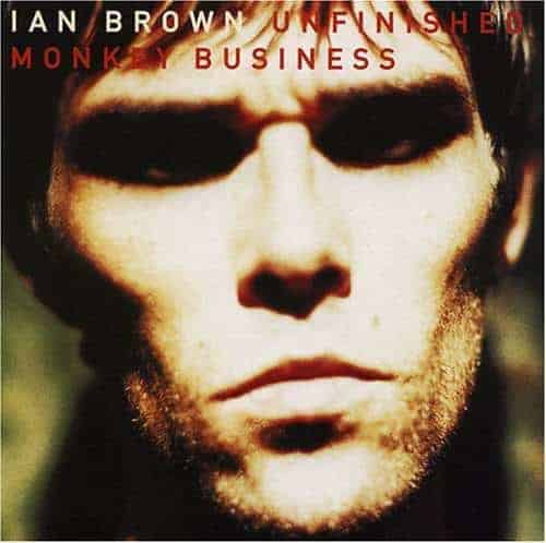'Unfinished Monkey Business' by Ian Brown
