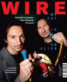 Issue 331 by The Wire