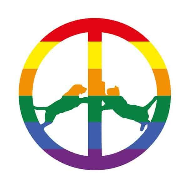 'Rainbow Edition' by Hype Williams