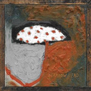 '12th House Rock' by Narrow Head