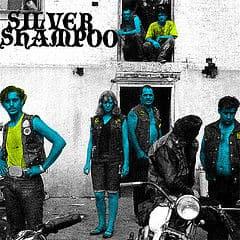 Silver Shampoo by Silver Shampoo