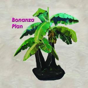 'Bonanza Plan' by Barringtone