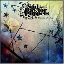 Unknown Colours by Sad Day For Puppets
