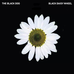 'Black Daisy Wheel' by The Black Dog