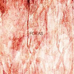 'Foras' by Siavash Amini