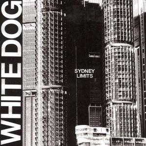 'Sydney Limits' by White Dog