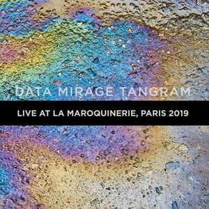 'Data Mirage Tangram Live at La Maroquinerie 2019' by The Young Gods
