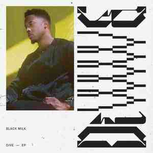 'DiVE' by Black Milk