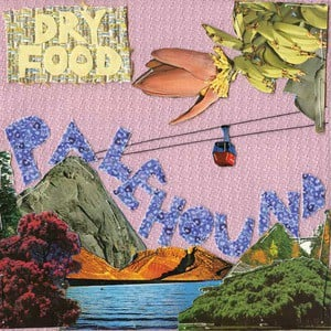 'Dry Food' by Palehound