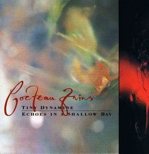 'Tiny Dynamine / Echoes In A Shallow Bay' by Cocteau Twins
